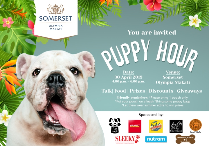 First Puppy Hour at Somerset Olympia Makati